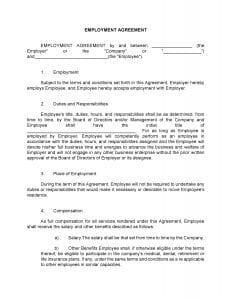 Standard Employment Agreement